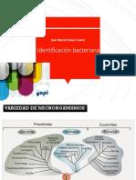 BM P2D IDENTIFICACION  v1 pdf.pdf