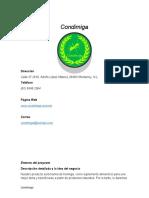 Plan de negocios - 20 abril.docx.docx