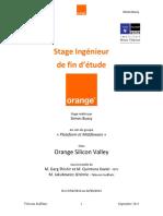 report_osv.pdf