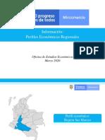 OEE-FP-Perfil-region-Sur-Macizo-31mar20