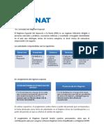 ICFN - Sesión 2 - REGIMEN TRIBUTARIO_RER Lectura complementaria