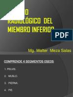 7. I. Miembro Inferior -WALTER MEZA.pdf