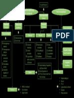 Concept Map Biomass.pptx