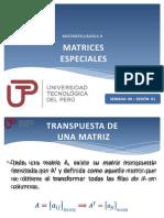 Matrices especiales.pptx