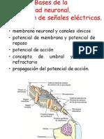 Psicobiología_Tema 10