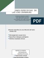 Infecciones especificas  de las vías urinarias [Autoguardado]