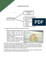 Metabolismo del Calcio y Fósforo.pdf