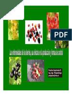 CLASIFICACION DE ALGUNAS ENFERMEDADES