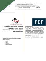 PlanES PUERTO AGUIRRE.docx