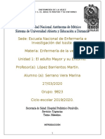 INTEGRADORA 1 ENFERMERIA DE LA VEJEZ.docx