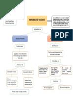 MAPA CONCEPTUAL MERCADOS PRIMARIOS Y SECUNDARIOS - MARIO VIASUS
