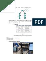 Desarrollo_pap_redes