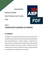 APUNTES 7 CUMPLIMIENTO EJECUTIVO DE LAS SENTENCIAS e