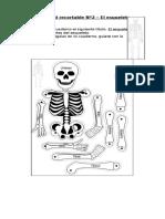 Actividad recortable  El esqueleto