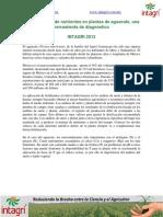 05. Concentracion de nutrientes en plantas de aguacate una herramienta de diagnostico.pdf