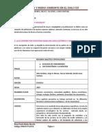 R.A.E  Y PREGUNTAS GENERADORAS N°1