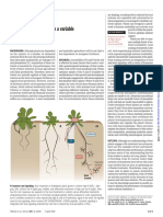 2020_Oldroyd and Leyser plants diet
