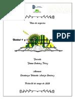 Unidad 4 plan de negocios - - copia.pdf