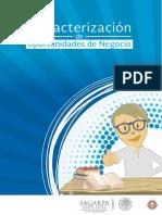 Caracterización de Oportunidades de Negocio-ON-037-Cultivo de Chile