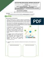 CIENCIAS NATURALES 7 2DO PERIODO.docx
