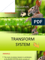 Transport Circulation (In Plants and Animals)