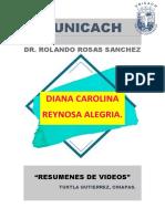 resumenes parte II- DIANA CAROLINA REYNOSA ALEGRIA