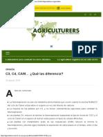 C3, C4, CAM… ¿Qué las diferencia – Agriculturerscom  Red de Especialistas en Ag.pdf