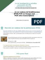 Presentacion PCR eucariontes