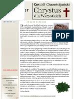Newsletter 01.2011
