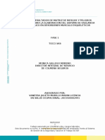 INFORME MATRIZ DE RIESGO DE  TOCCI SAS.doc