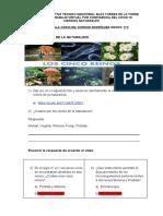 TALLER 1 DE LOS REINOS DE LA NATURALEZA 3 GRADO (1).docx