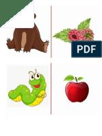 animale si hrana, simturi, sigular si plural