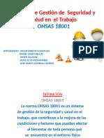 OHSAS 18001 MEGA PRO TECNO II
