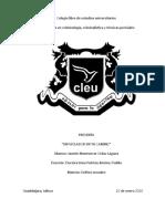 tesis delitos .docx