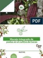 Cacao Tic´s-Presentación Unidad I.pdf