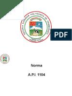LA_NORMA_API_1104