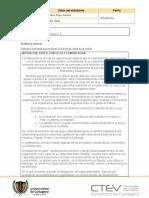 Plantilla protocolo individual (1).docx