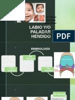 9. LABIO Y PALADAR HENDIDO