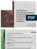 Factores de virulencia comunes a animales y plantas
