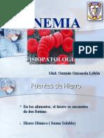 ANEMIA Fisiopatologia