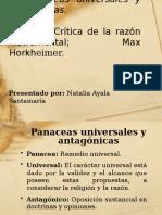 413969888-Exposicion-Panaceas-Universales-y-Antagonicas.pptx