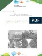 Fase2_Realizar estudio de cultivos de ciclo corto y semipermanentes