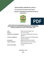Proyecto Microhabitat de R. sirensis en bambu