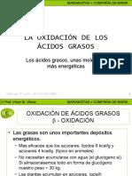beta-oxidacion-mcm-1