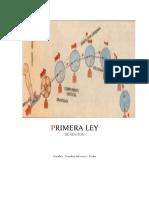 PRIMERA LEY.docx