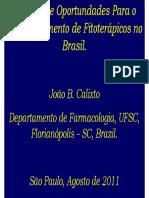joaobatistacalixto[1].pdf