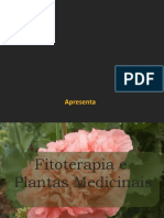 cursofitocompletoparcial-120117084930-phpapp02.pptx