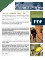 Spring 2010 Nevada Wilderness Project Newsletter