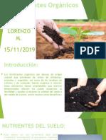 Fertilizantes orgánicos esmeralda