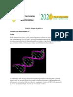 Taller de biología ADN, ARN, VIRUS..pdf